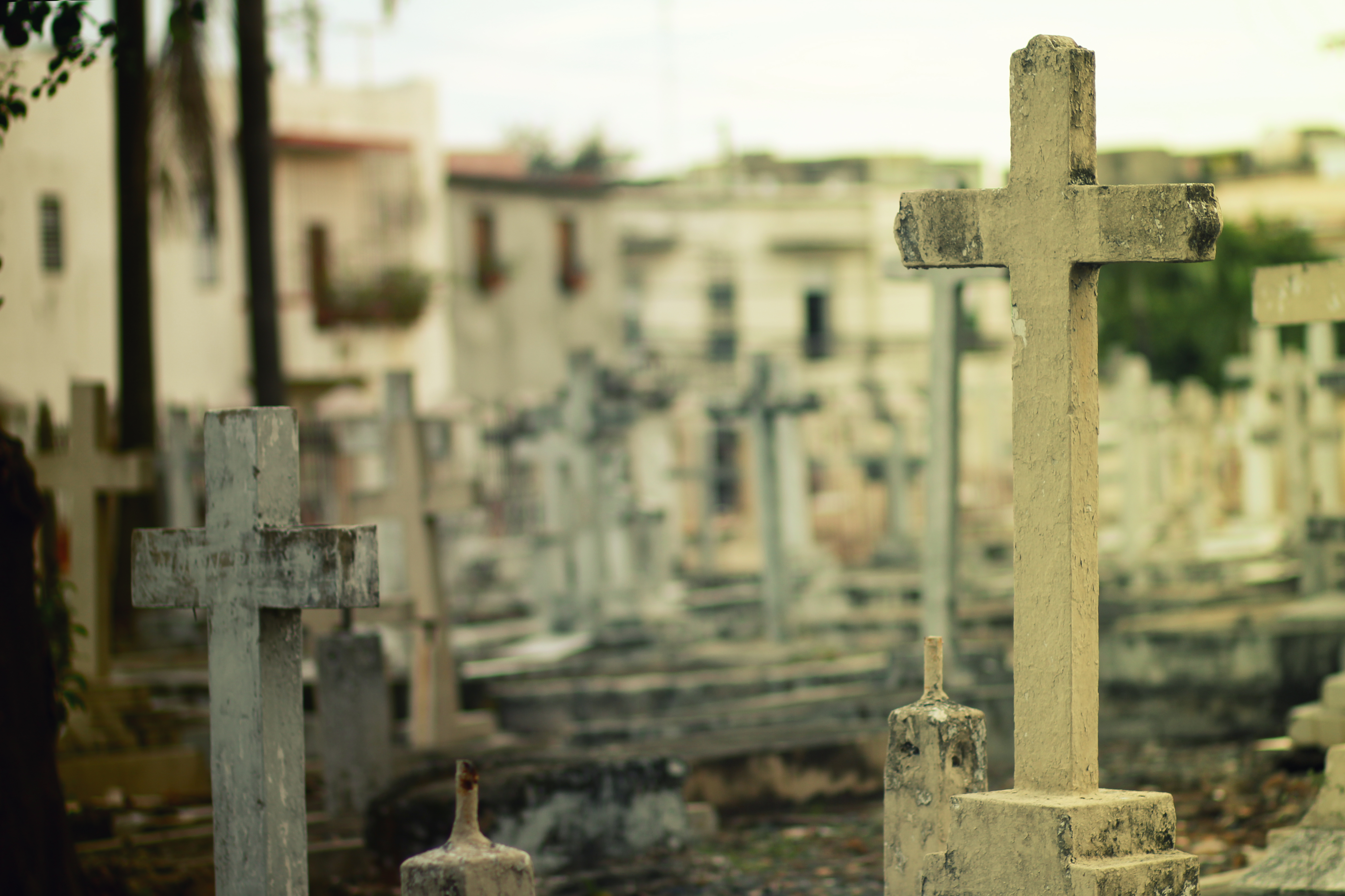 2 white headstone inside cemetery during daytime free stock photo