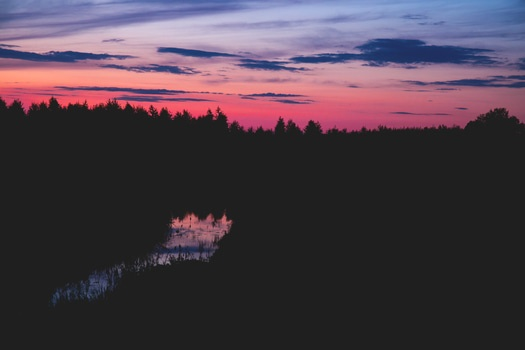 Body of Water Between Silhouette of Trees Under Red Black and Grey Sky at Sunset