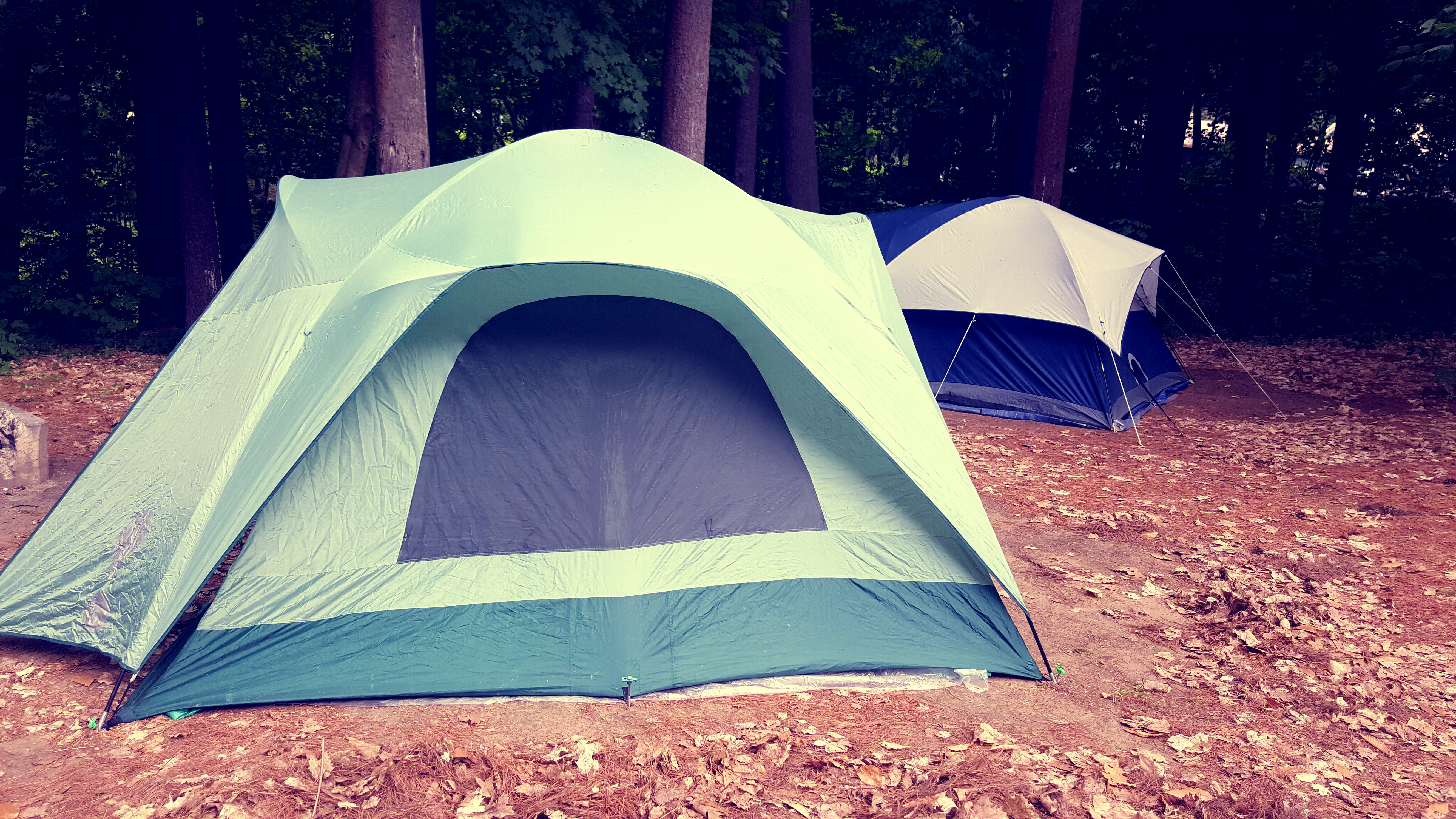Free Download & White Green and Black Outdoor Tent · Free Stock Photo