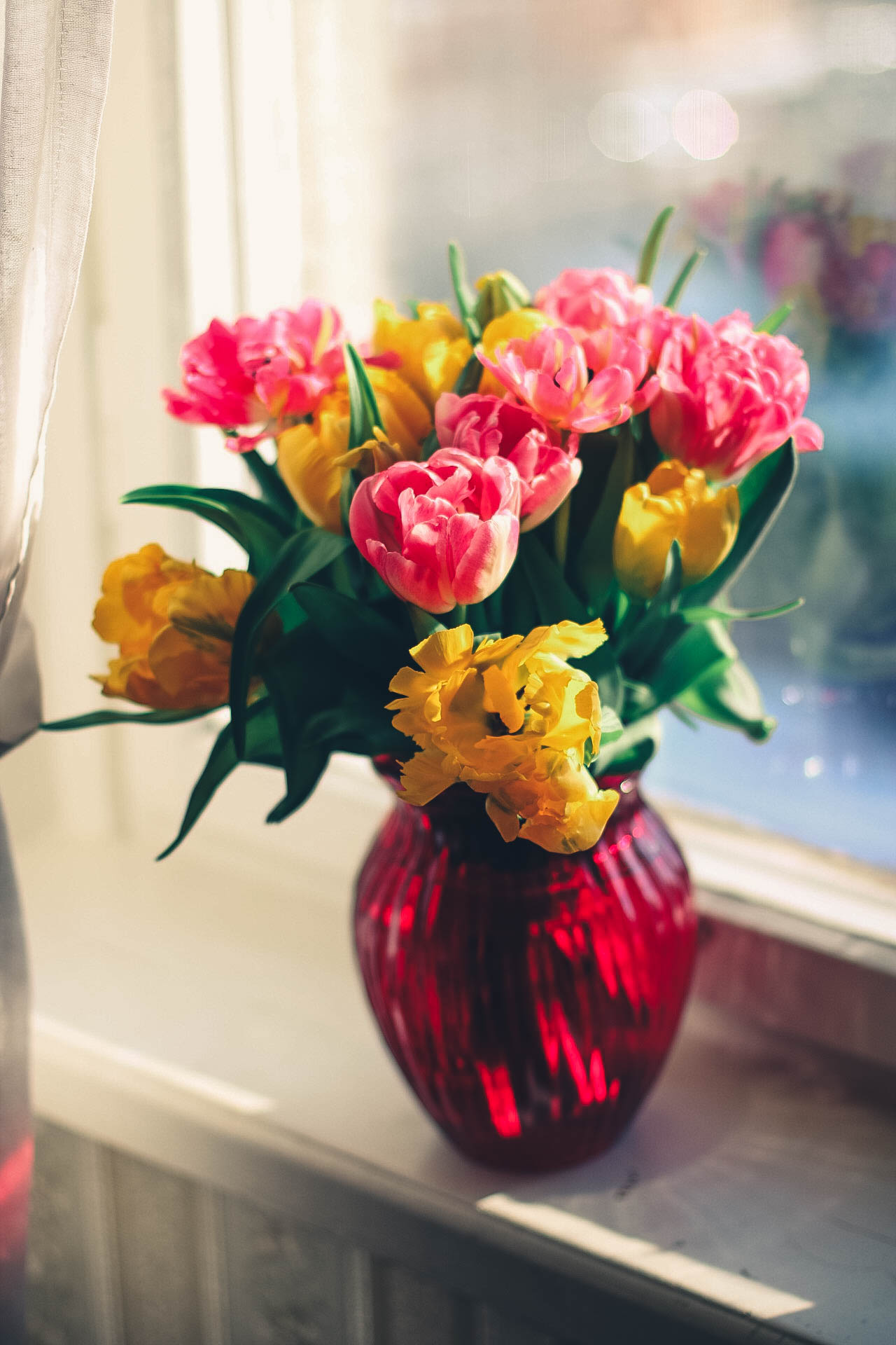 Free stock photos of flower vase pexels pink and yellow petaled flower on red glass vase reviewsmspy
