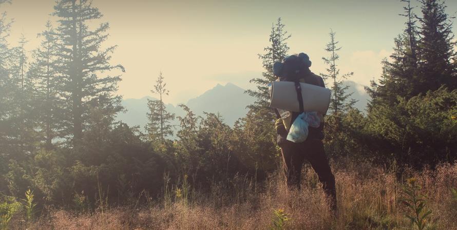nature, outside, hiker