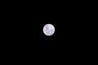 sky, dark, moon