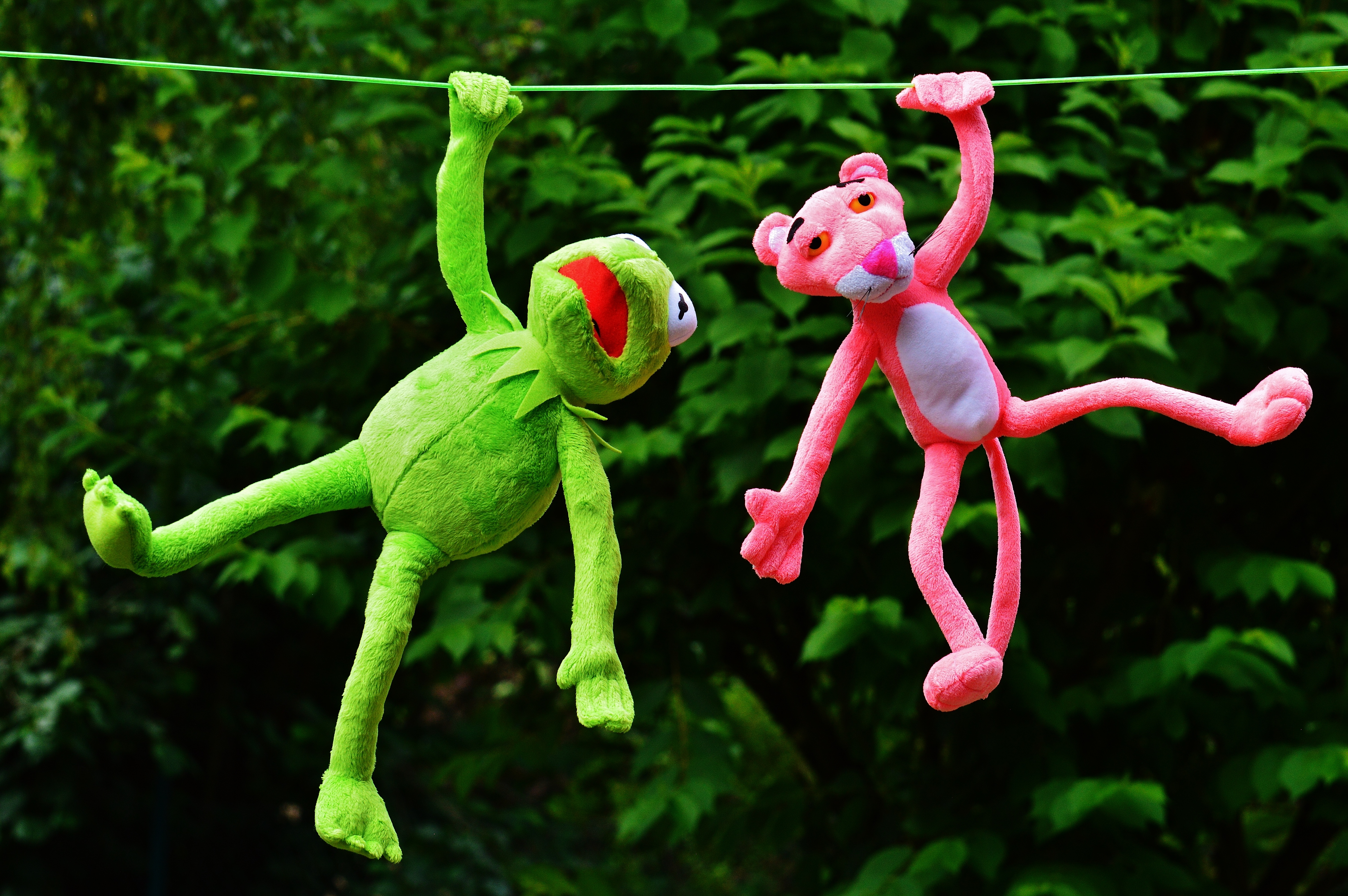 https://static.pexels.com/photos/128873/hang-out-plush-toys-kermit-the-pink-panther-128873.jpeg