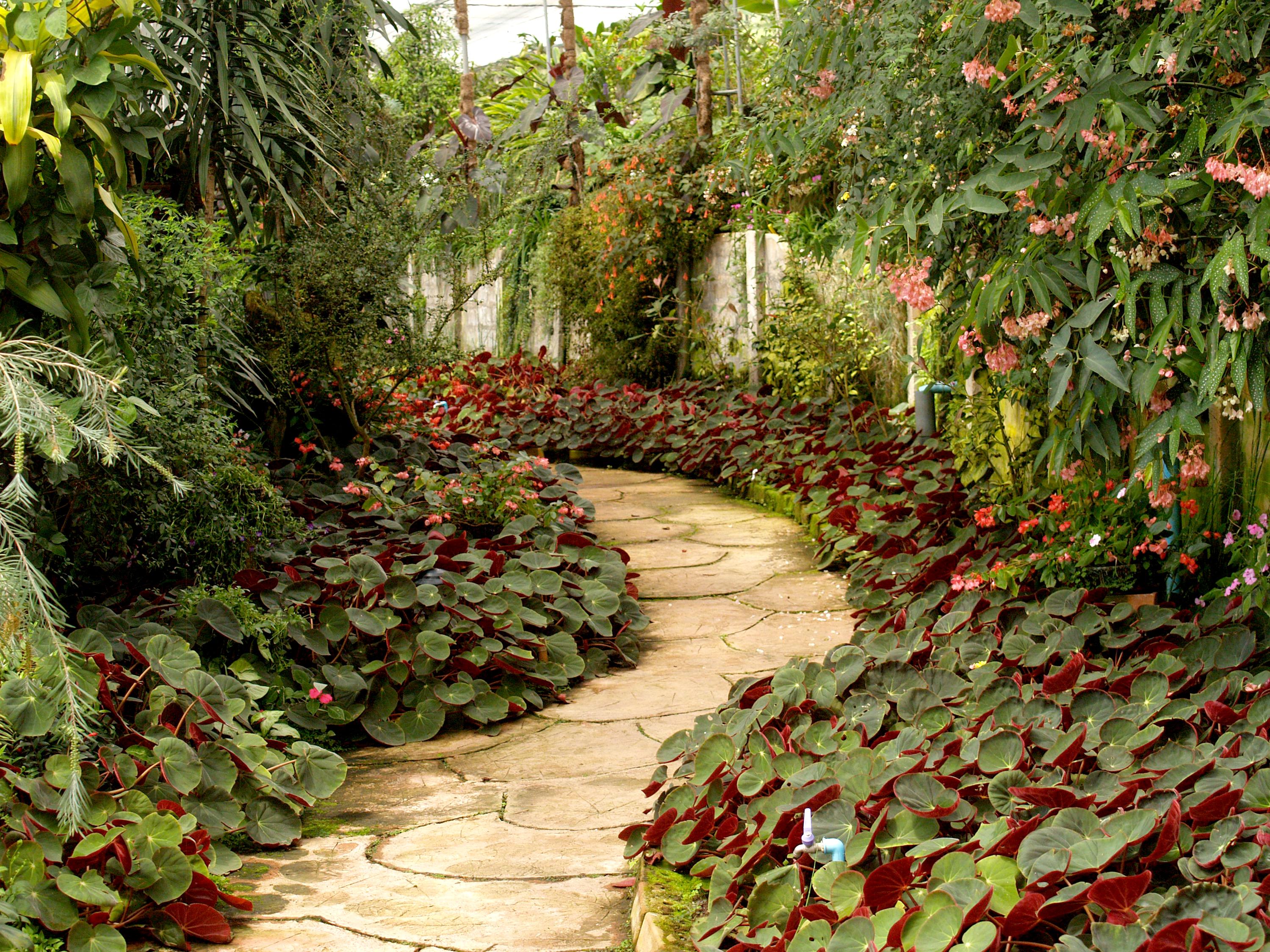 Garden Photos Home Decoration Interior Design