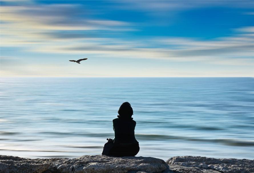 Persona sentada en piedra cerca Cuerpo de agua Frente a Flying Bird
