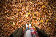 nature, person, leaves