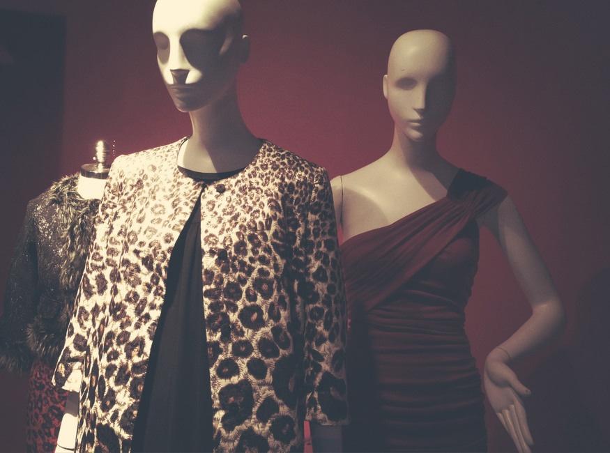 Free stock photo of dress, fashion, man