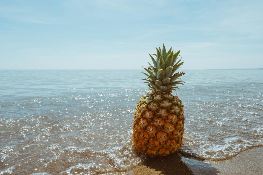 Free stock photo of beach, fruit, horizon