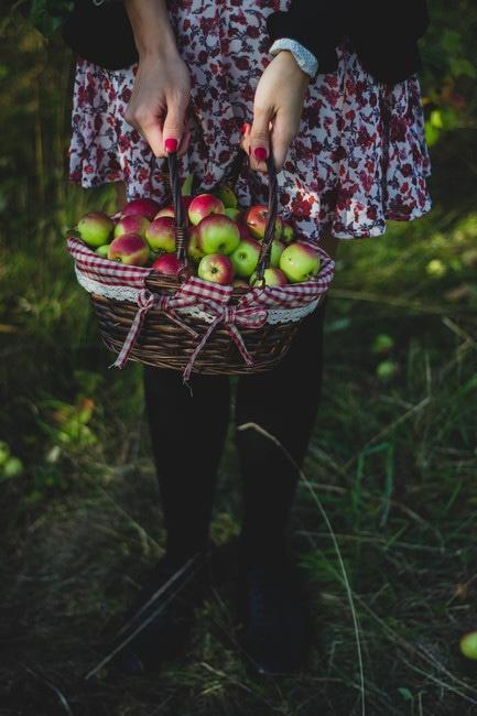 apples, basket, fruits