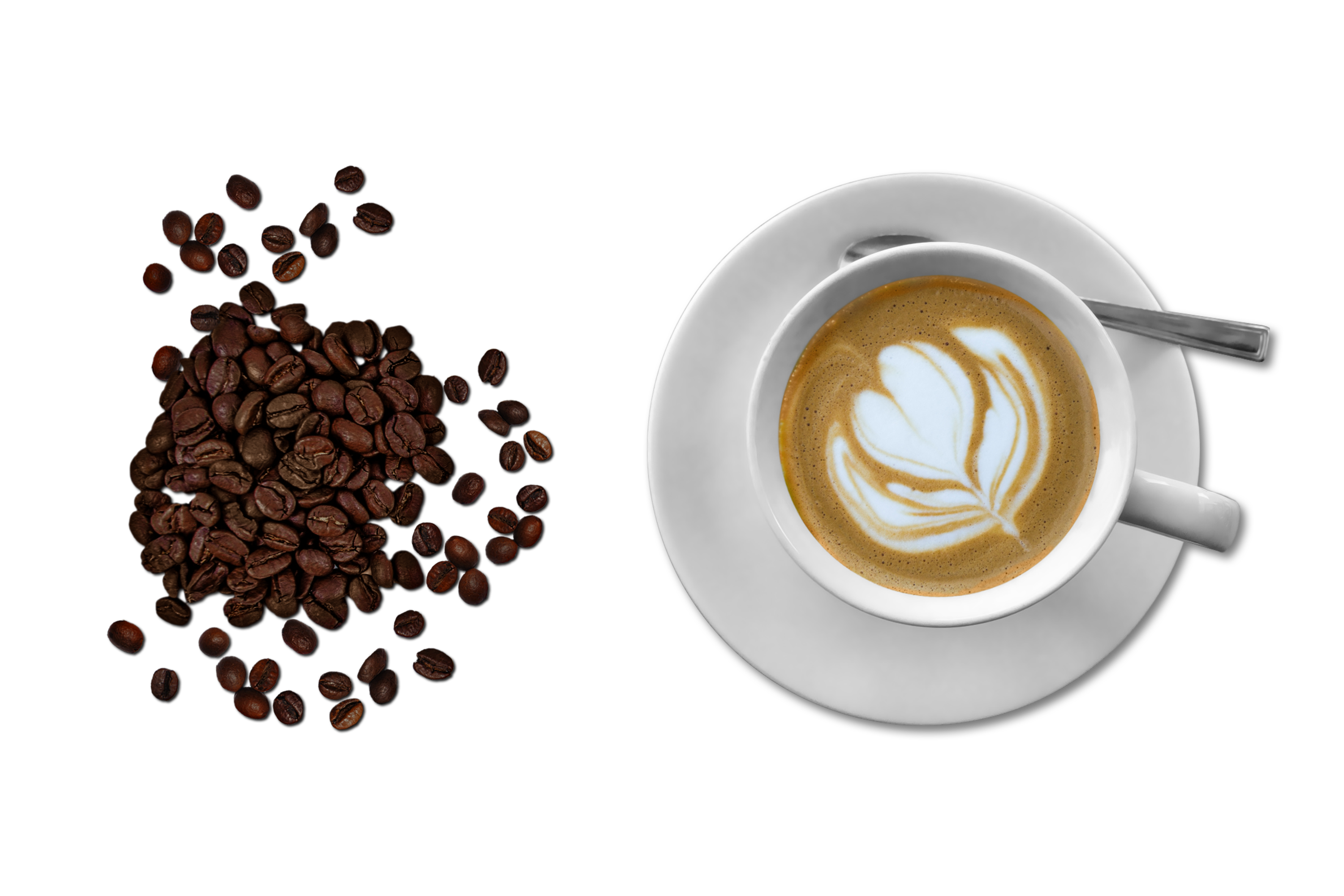 Free stock photo of aroma, bar, beans isolated