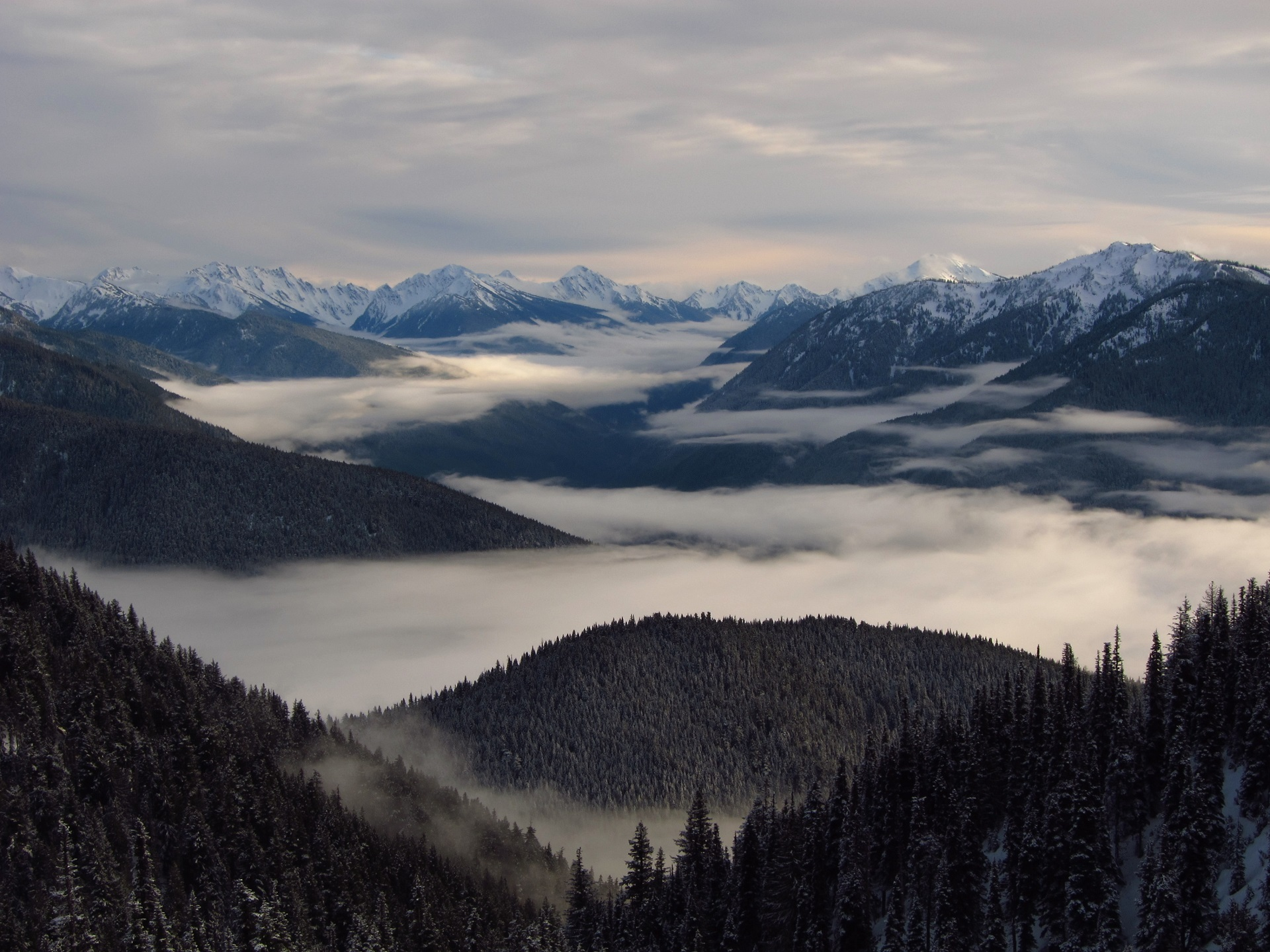 Aerial photography of foggy mountains free stock photo for Landscape photos