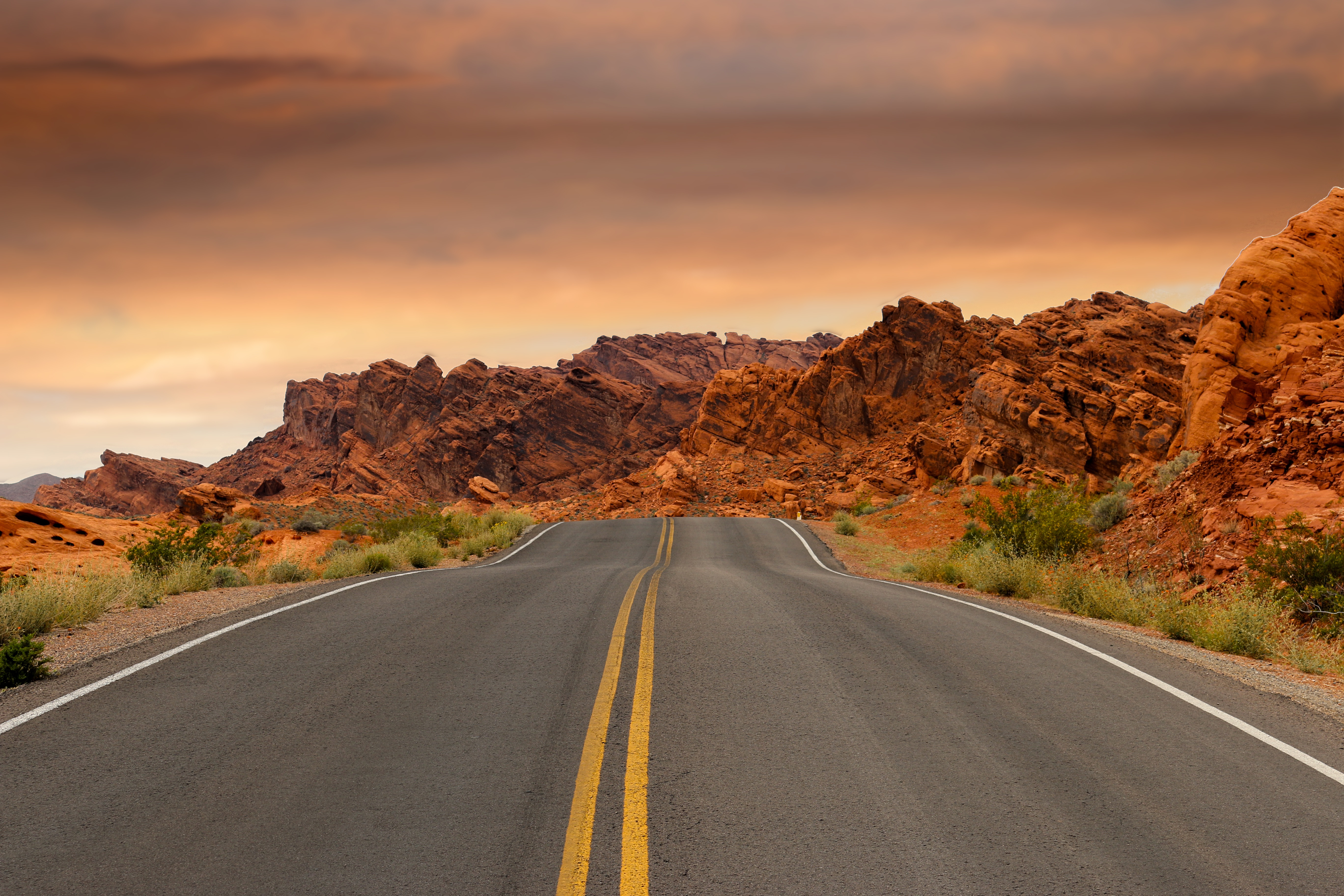road trip ideas for summer | the epileptic blogger