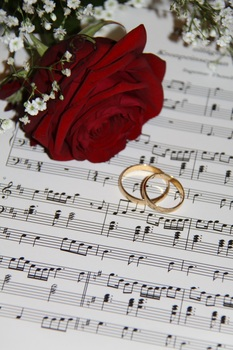 2 Gold Eternity Ring Near Red Rose on Musical Notes