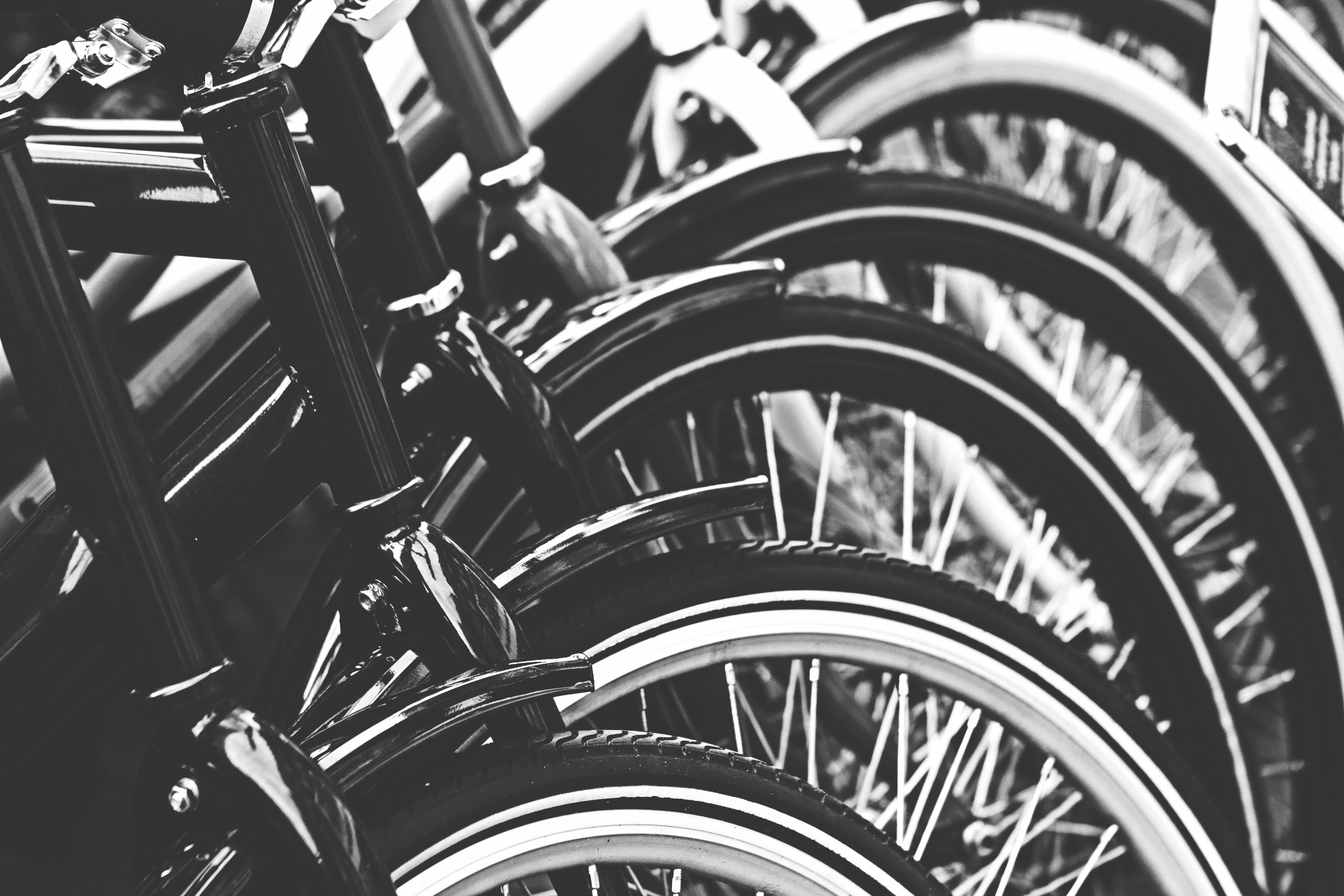 Grayscale Photography Of Bicycle Free Stock Photo
