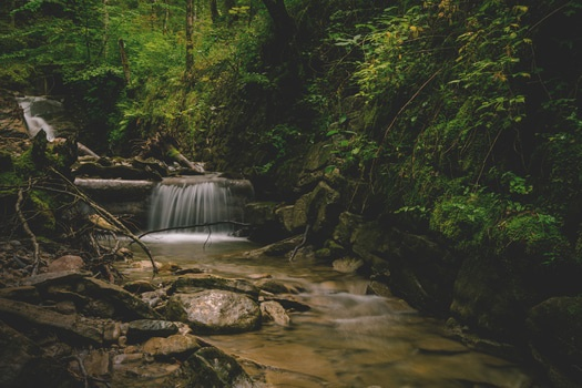 Forest and Water Falls Landscape Photo