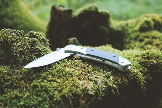 Free stock photo of moss, outdoor, knive, sharp