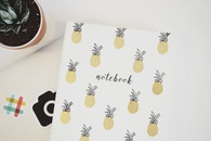 notebook, plant, pineapple
