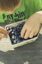 Boy Picking on Blueberries in Cardboard Box