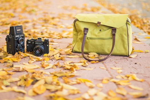 Free stock photo of photography, vintage, autumn, fall