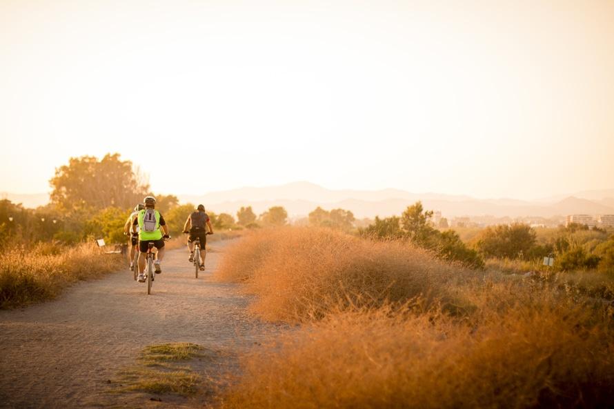 path, bikes, bicycles