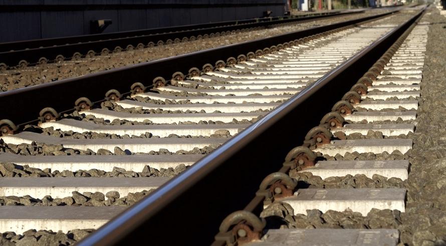 Dier op spoor tussen Oss en Den Bosch