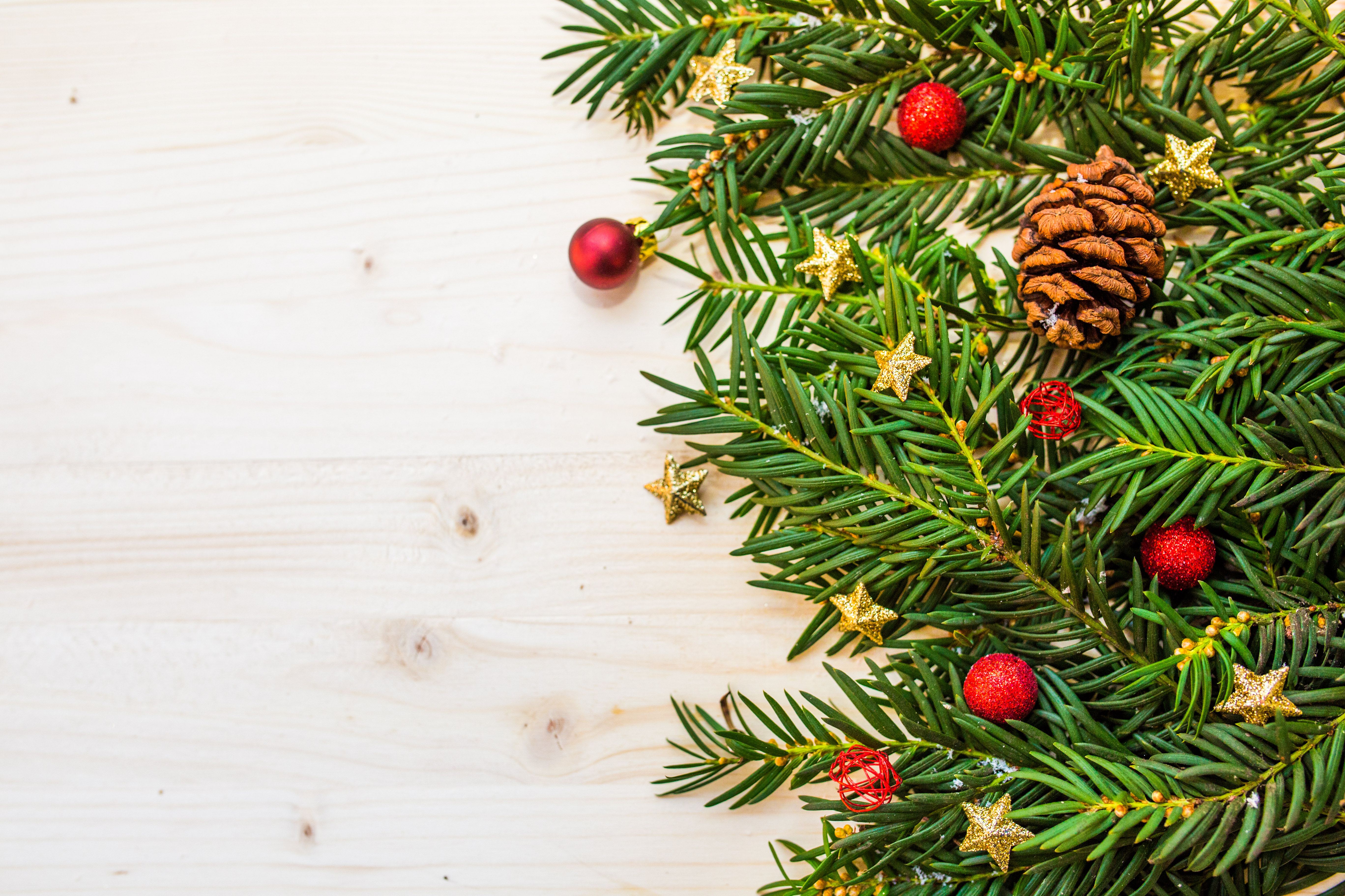 Free Stock Photos Of Christmas Tree Pexels - Plant Christmas Trees