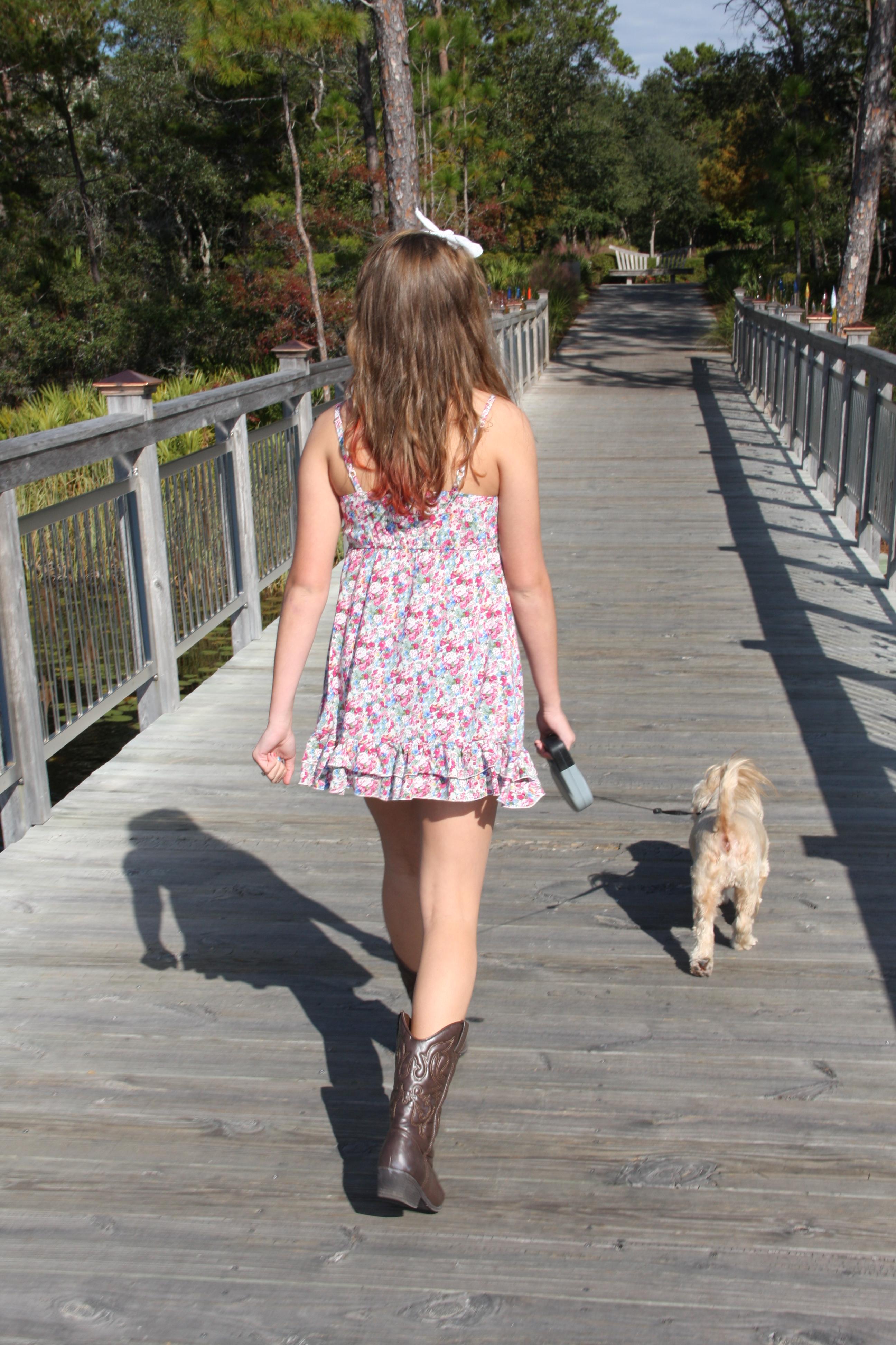 Free Stock Photo Of Dog Girl Walking