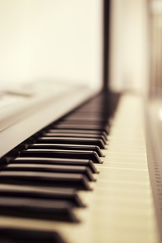 Macro Photo of Piano Keys