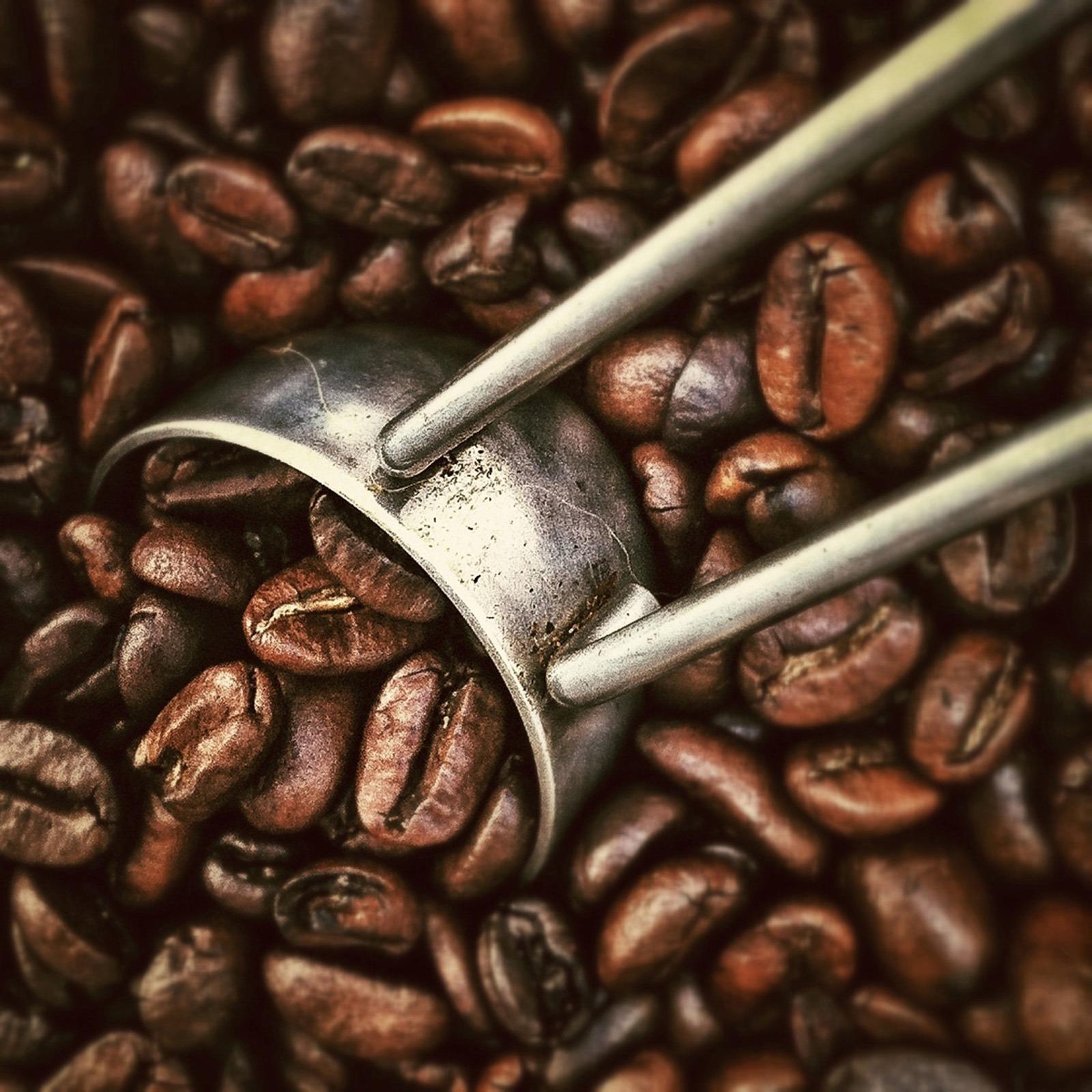 Free Stock Photo Of Beans, Caffeine, Coffee