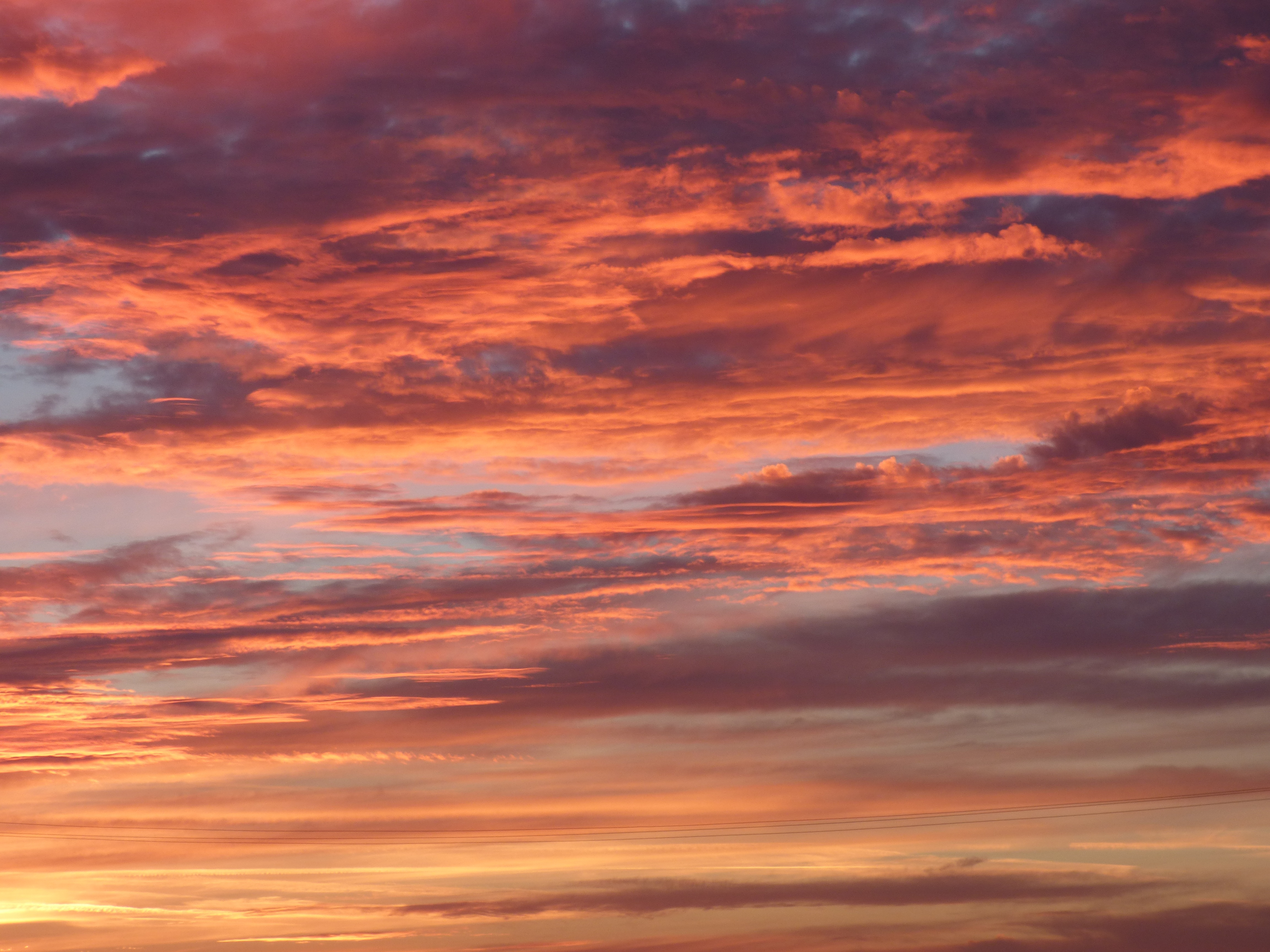 purple beach sunset wallpaper