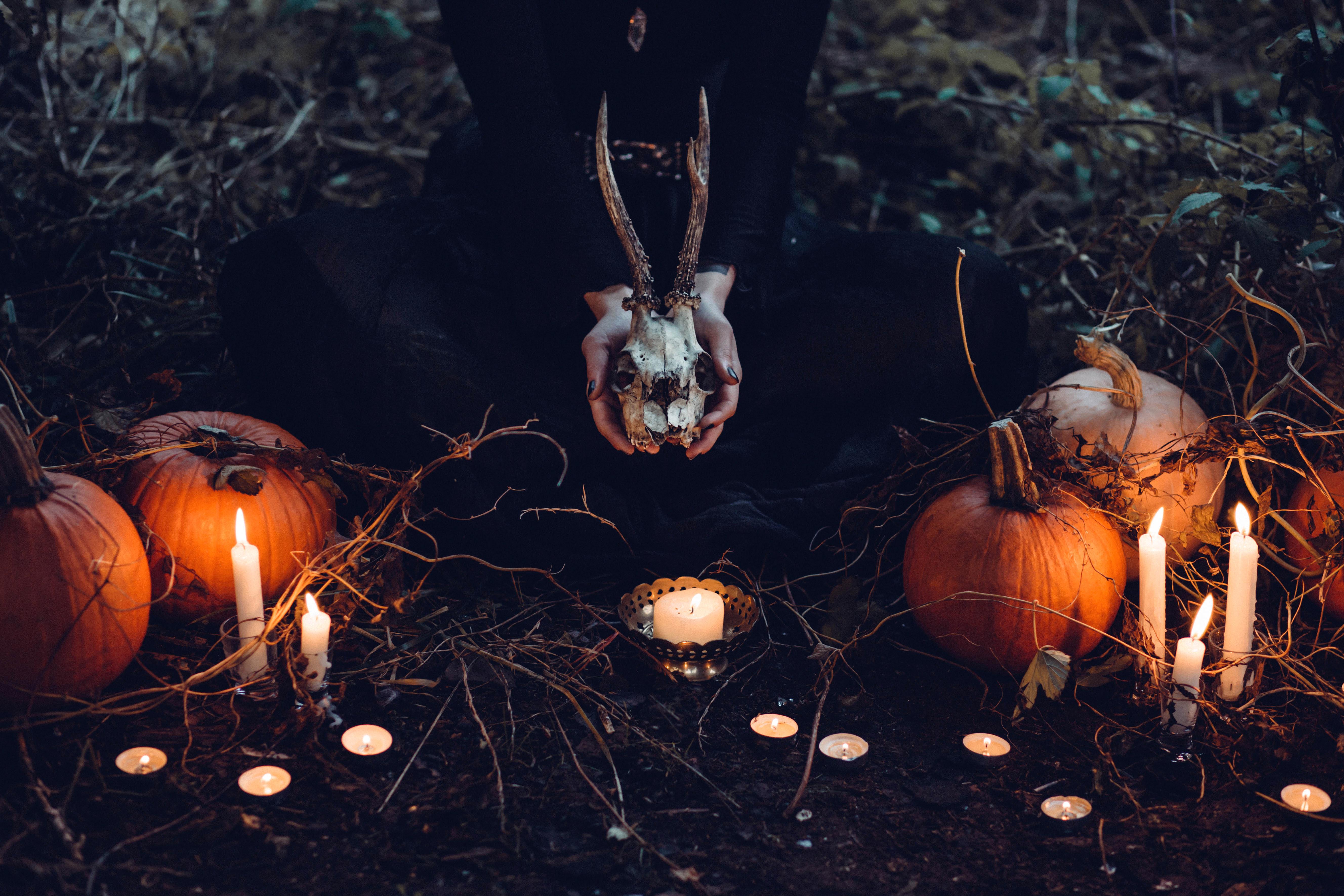 Brown Pumpkin Halloween Decor and Gray Skull at Grass Field · Free ...