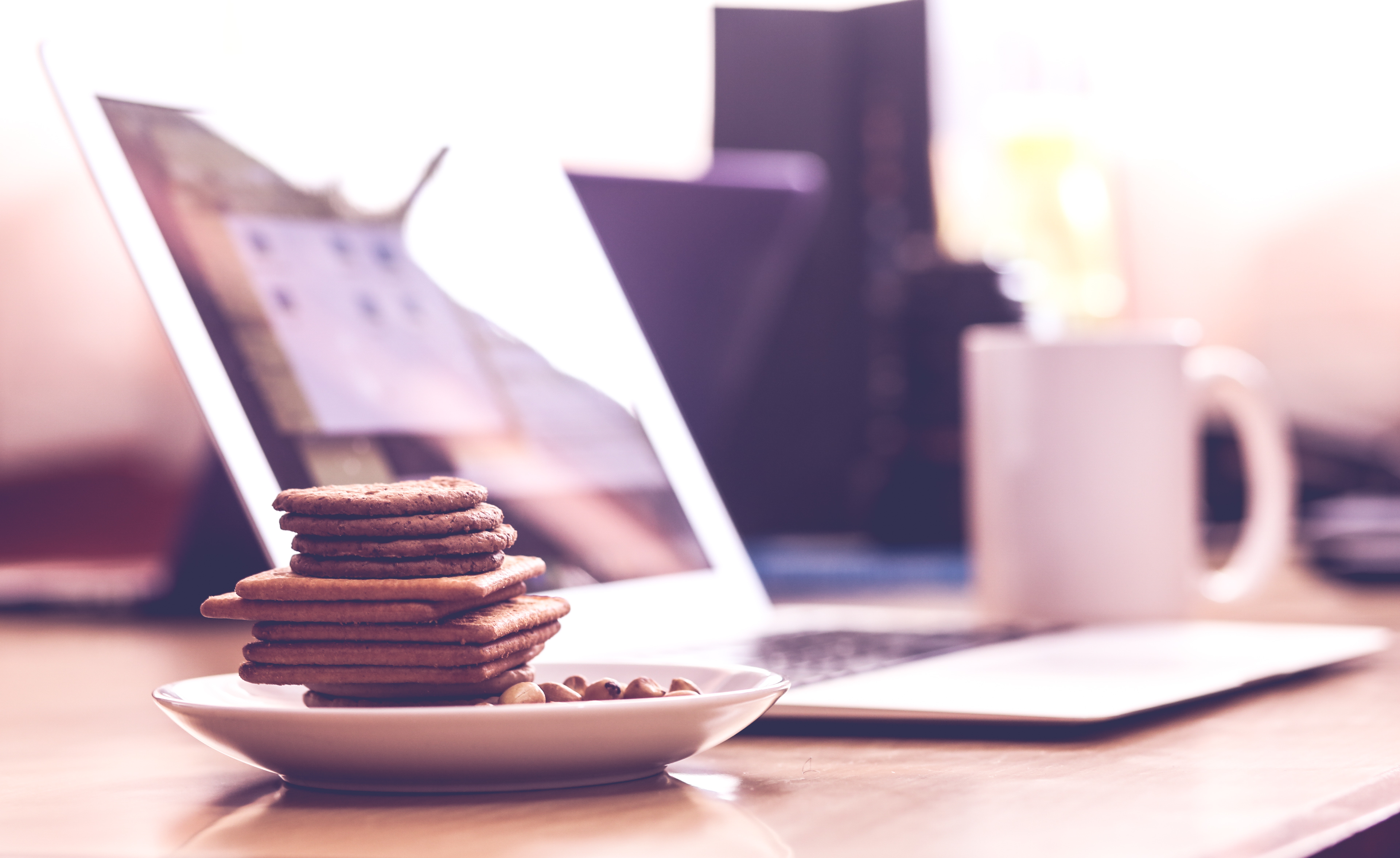 Biscuits In White Saucer 183 Free Stock Photo