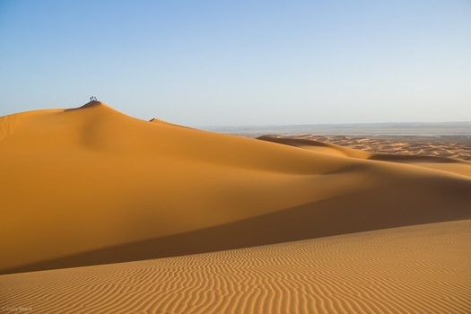 Brown Desert Sand during Daytime