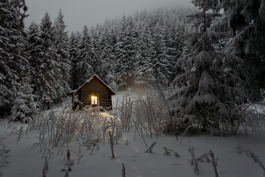 Brown Wooden House on White Snow Filed Forest With Trees