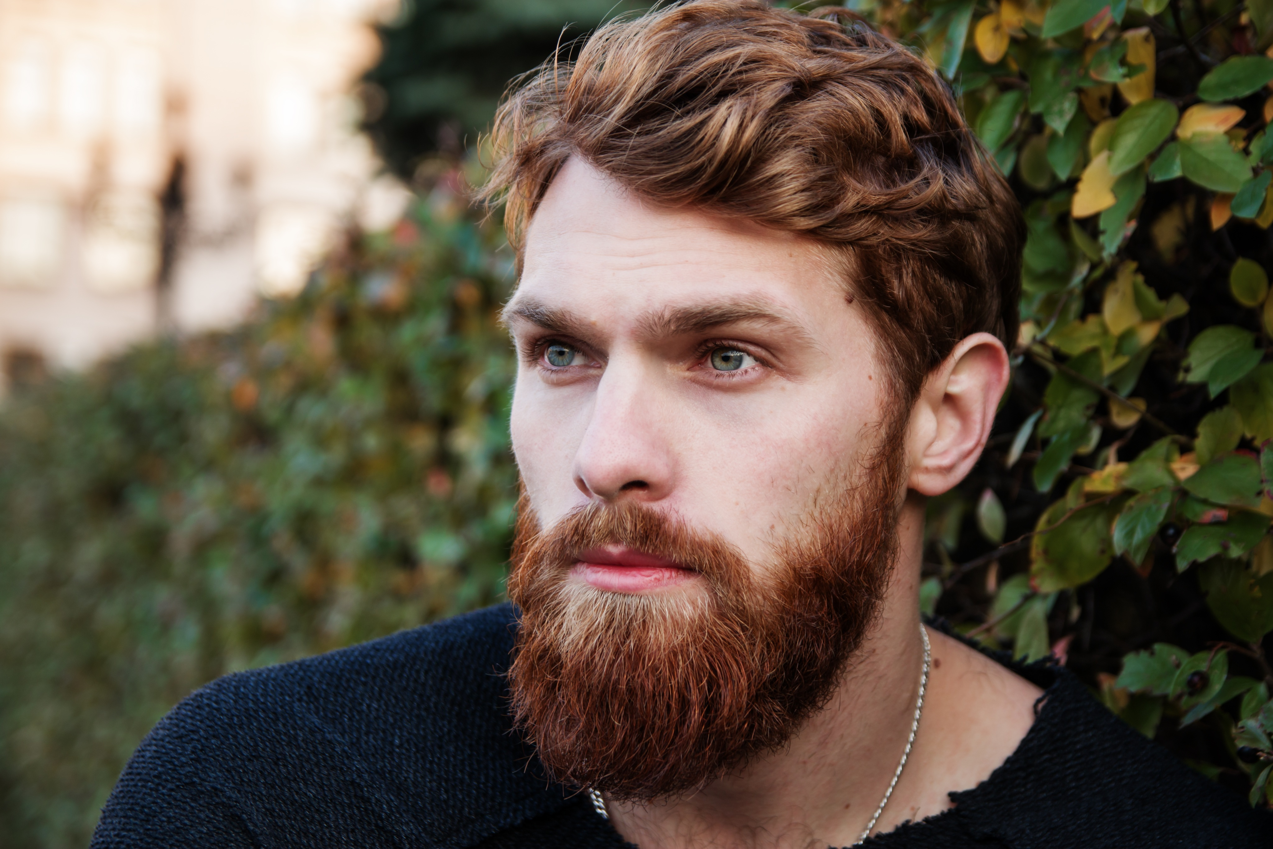 Free stock photos of beard pexels portrait of young man urmus Image collections