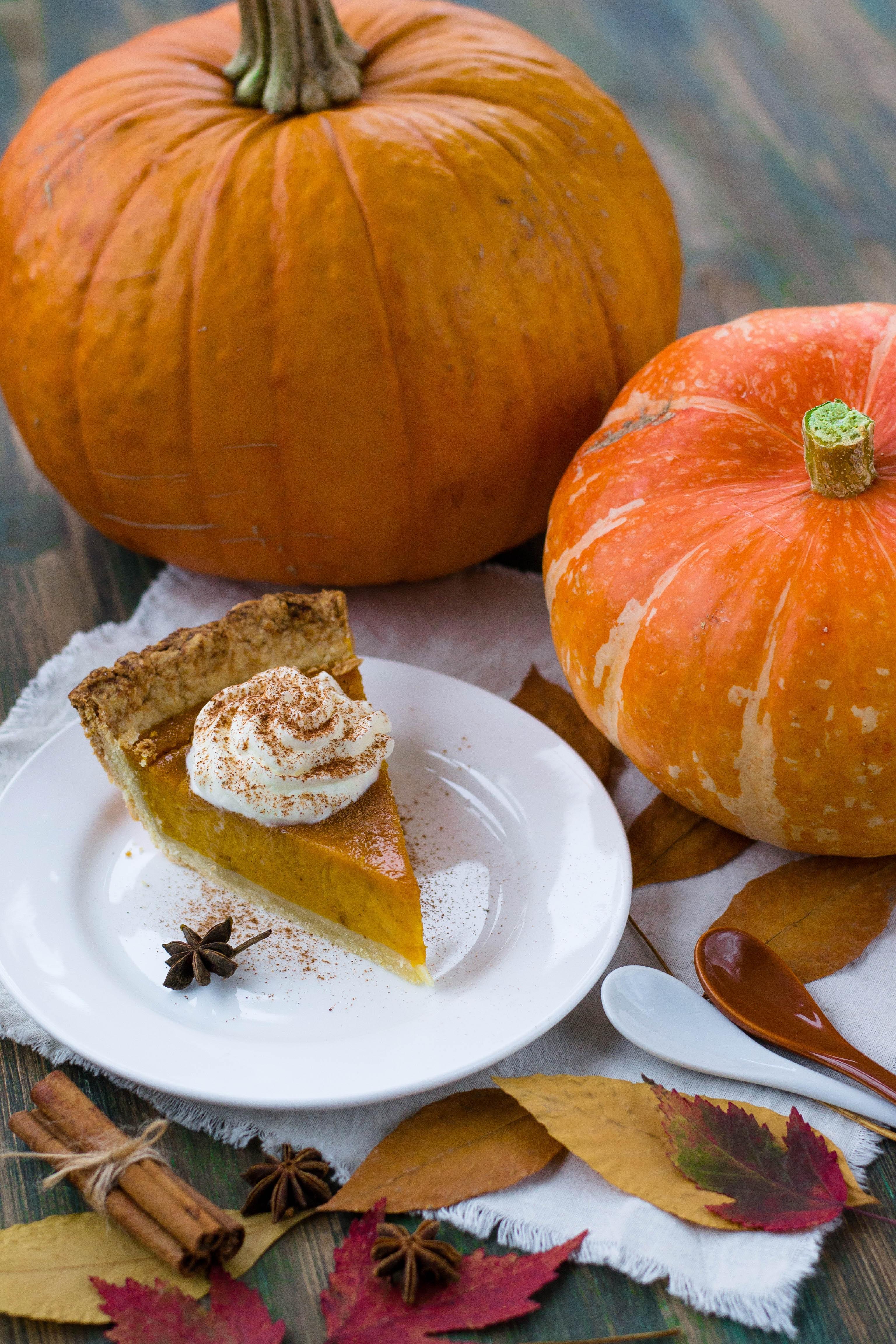 Photo Of Pumpkins 183 Free Stock Photo