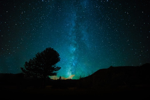 Free stock photo of sky, night, space, tree