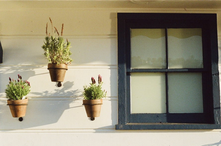 house, window, flowerpots