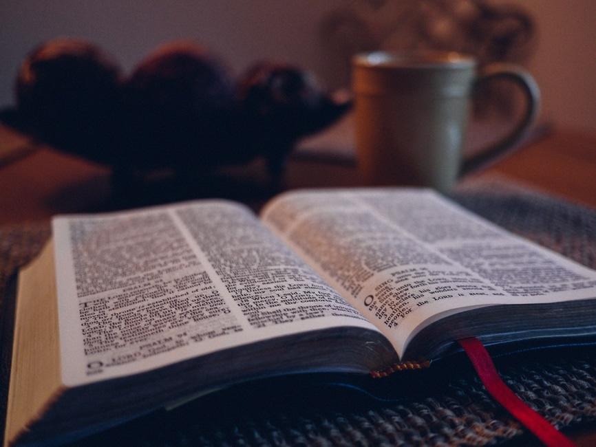 book, encyclopedia, words