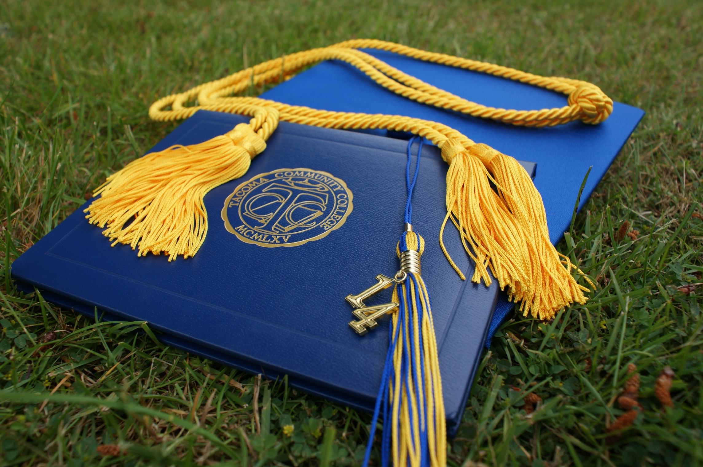 College graduation cap and diploma