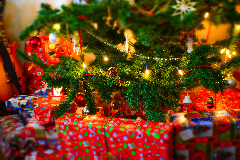 Free Stock Photo Of Christmas, Christmas Tree, Gifts