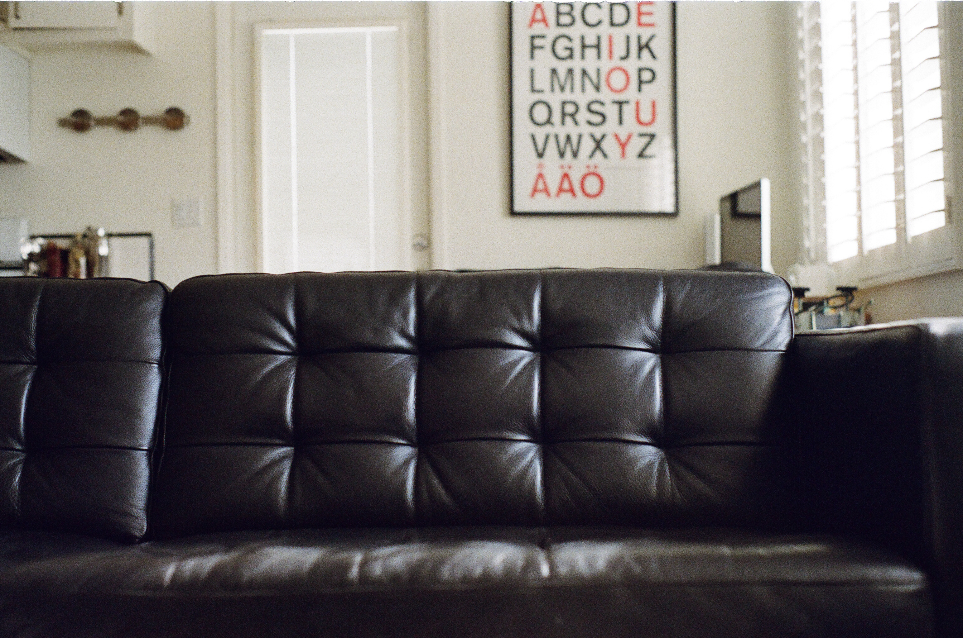 Free stock photo of couch furniture leather