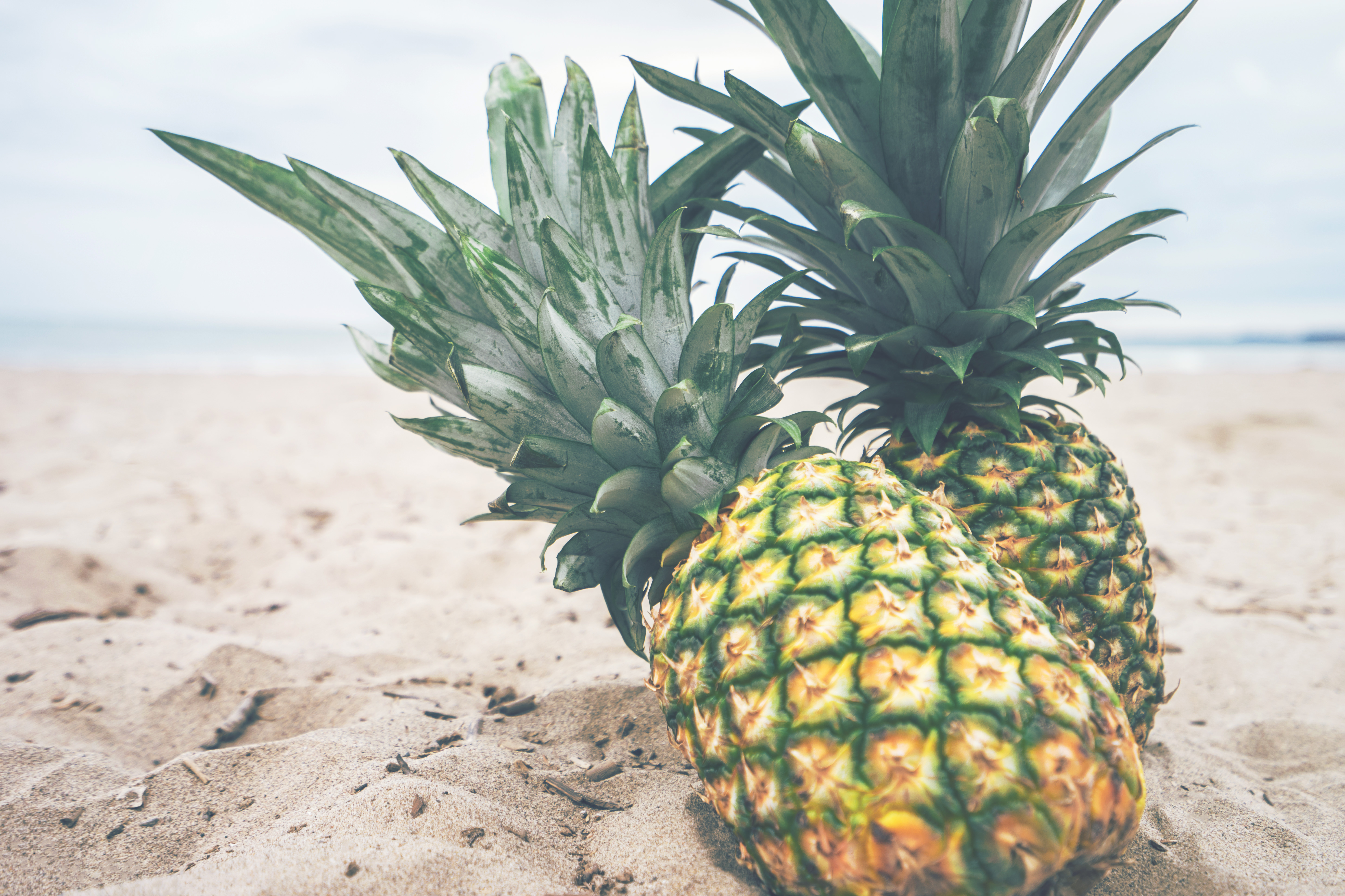 Free stock photo of beach, fruits, outdoors for Pineapple Wallpaper Beach  165jwn