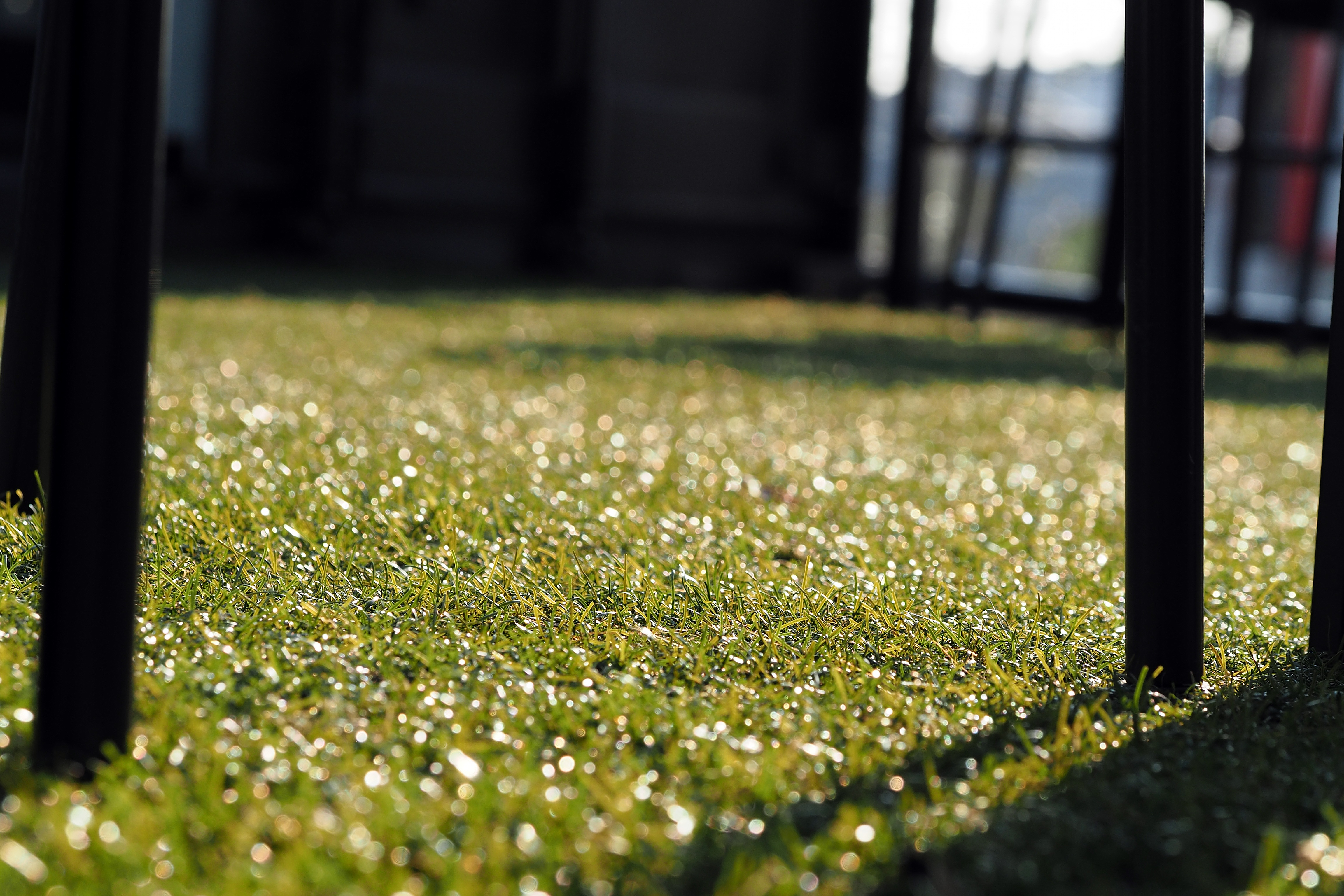 Free stock photo of artificial grass chair decorate
