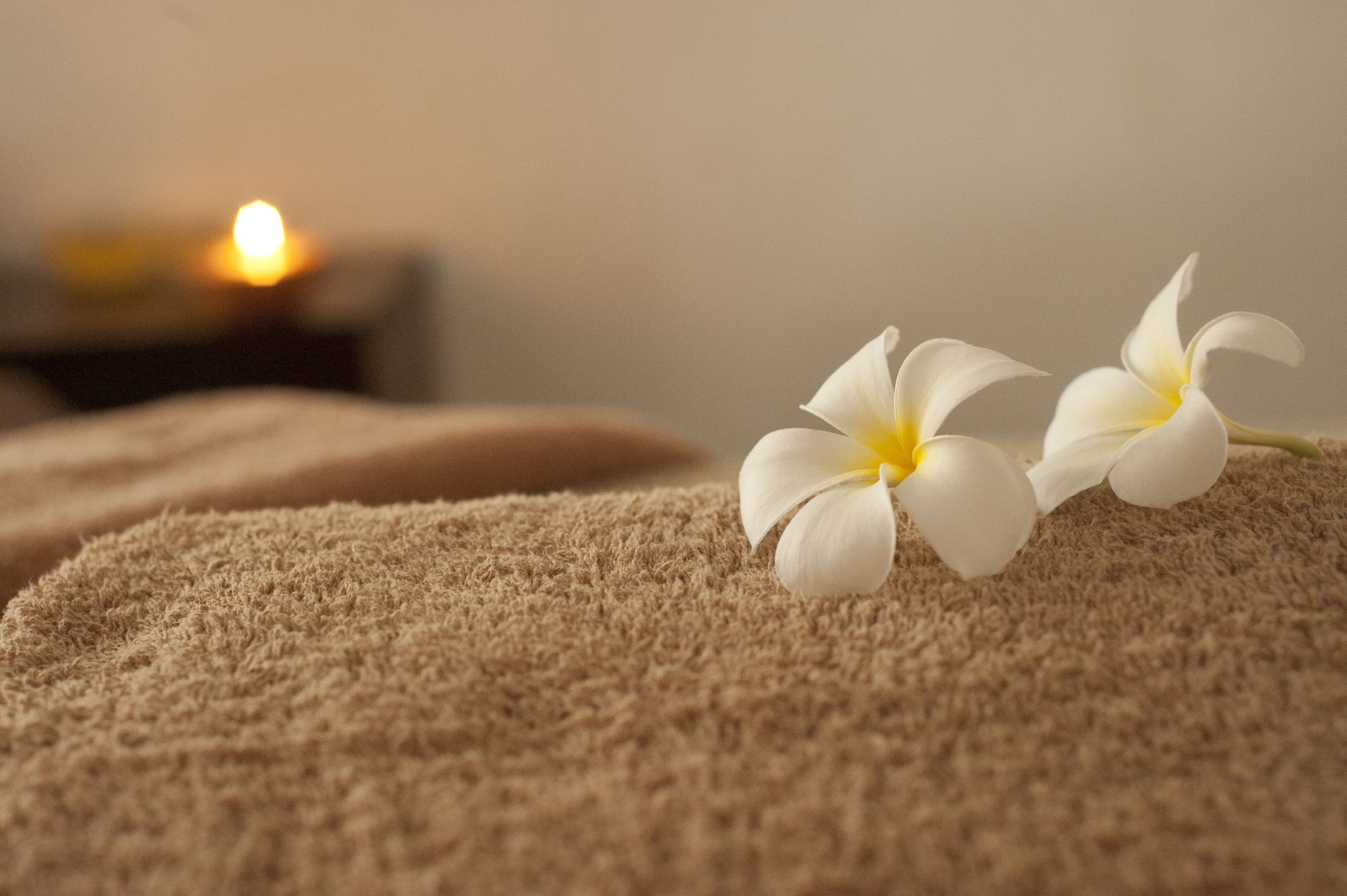 Massage Therapy picture