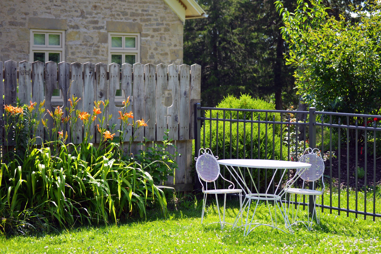 free stock photo of afternoon backyard beautiful