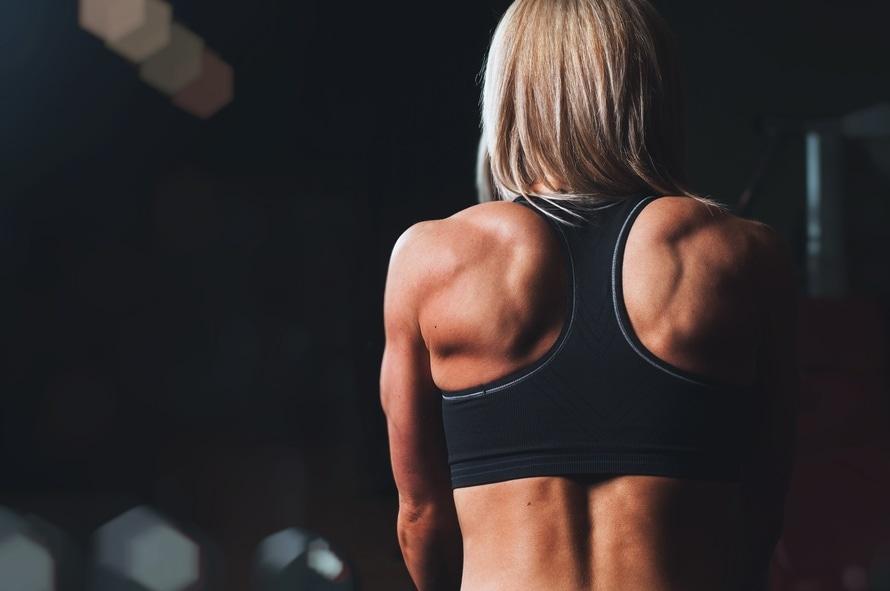 back, bodybuilding, fitness