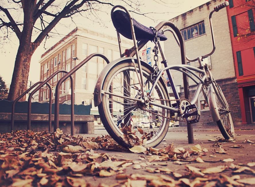 Transporte ecológico: la bicicleta la opción más ambiental para trasladarse