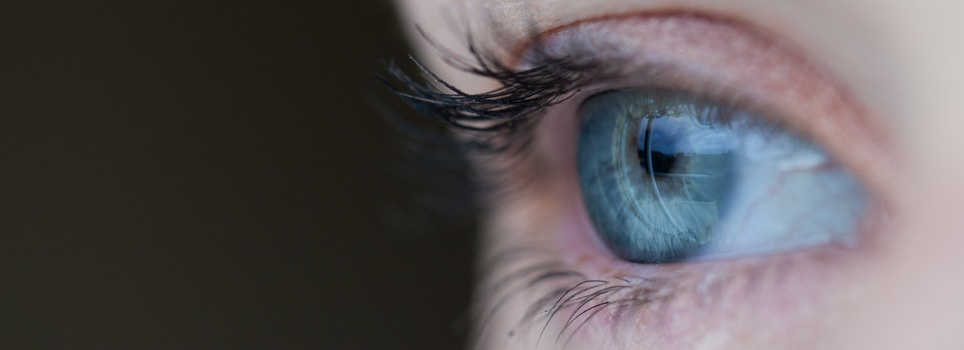 Free stock photo of eye, macro, human, iris
