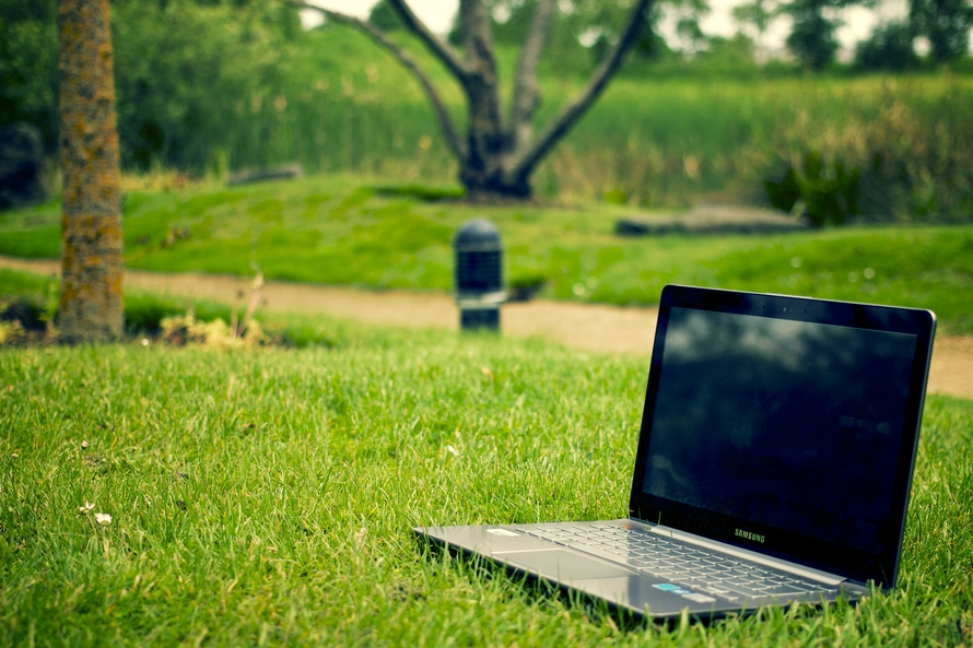 laptop, notebook, grass